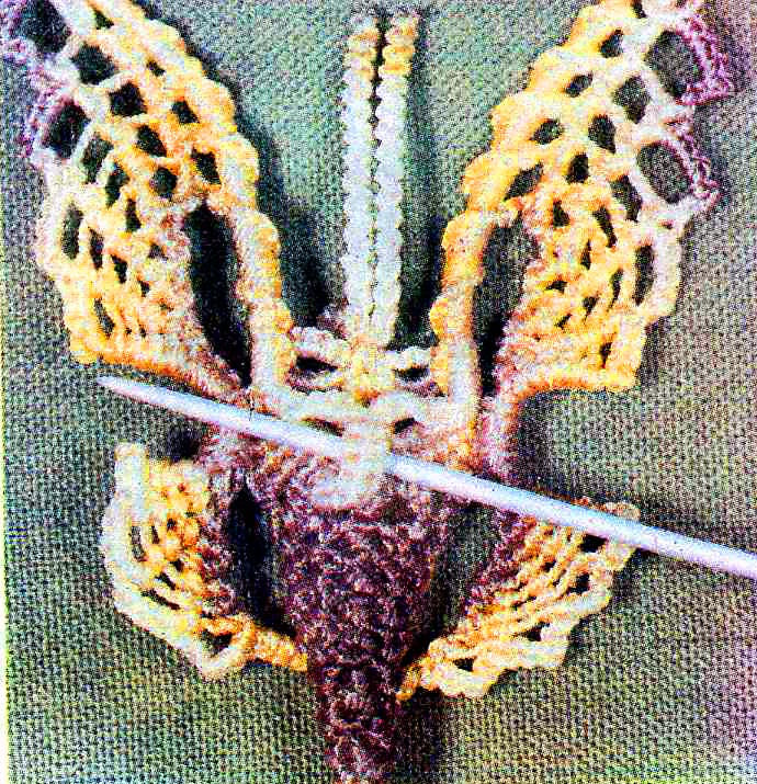 macrame butterfly instructions